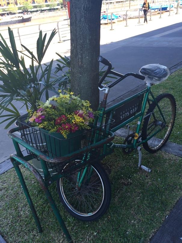 bike flores